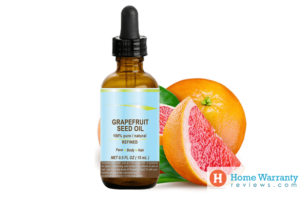 dosage instructions for grapefruit seed extract